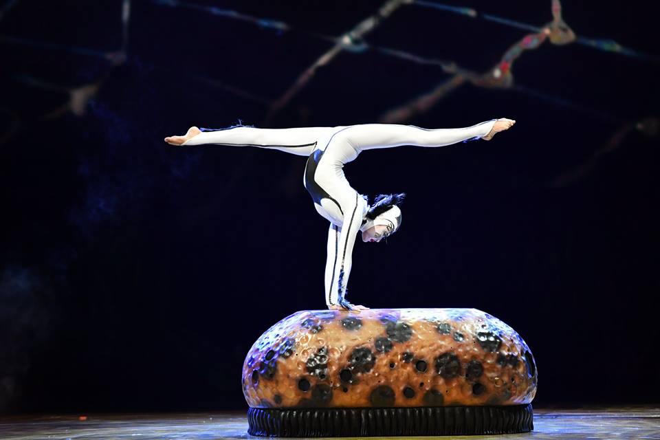 O Cirque du Soleil já está em Lisboa e trouxe um Ovo cheio de insetos