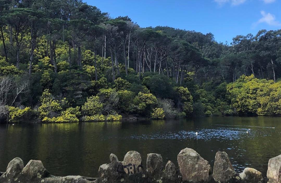 Vem aí uma caminhada para descobrires as lagoas de Sintra