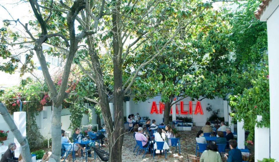 O Fado voltou ao Jardim da Casa de Amália Rodrigues