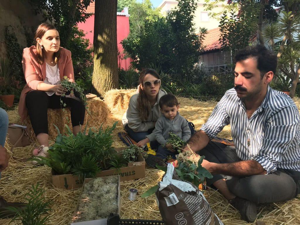 Workshop de kokedamas e seedbombs