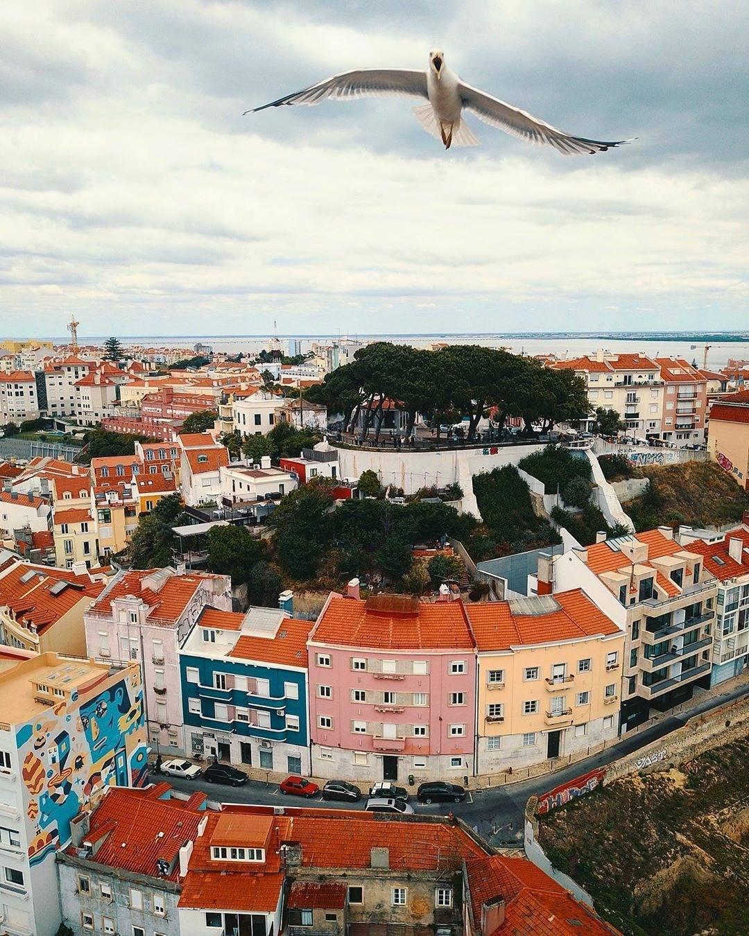Prédios no bairro da Graça em Lisboa vistos de cima