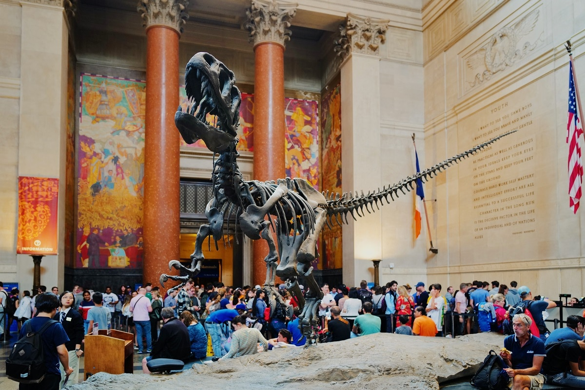 esqueleto de dinossauro à porta de um museu