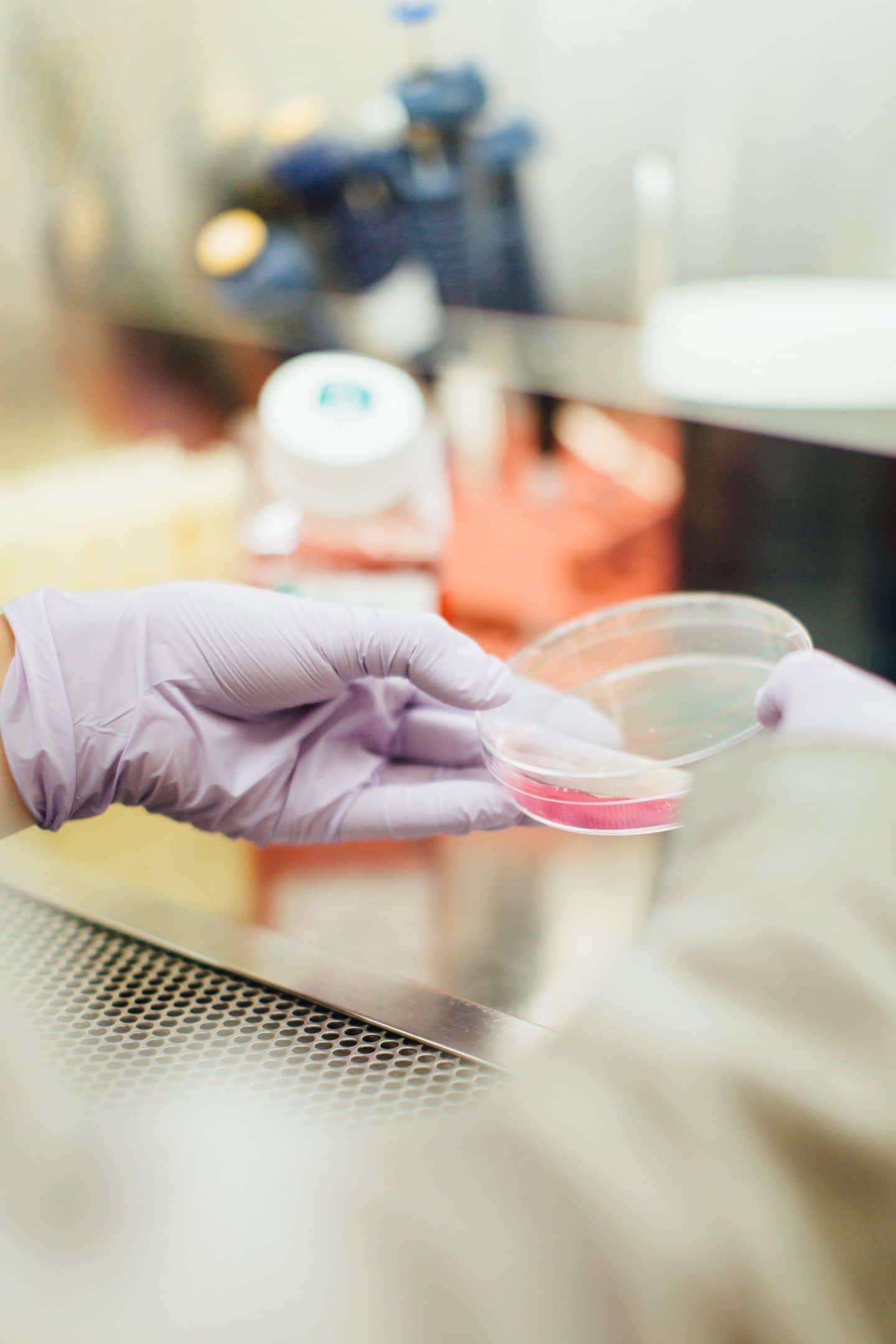 coronavírus em laboratório de análises