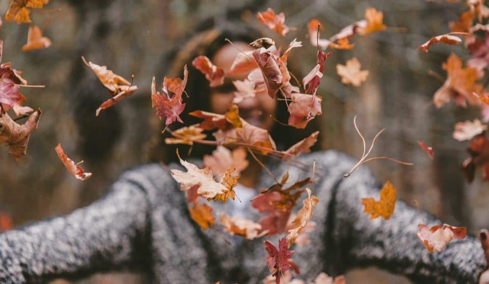 20 planos para celebrar em grande a entrada no outono