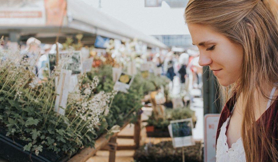 10 mercados de Sintra cheios de tradições e sabores