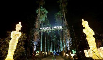 Magical Garden Belém: o espetáculo de luzes vai continuar a colorir o Jardim Botânico