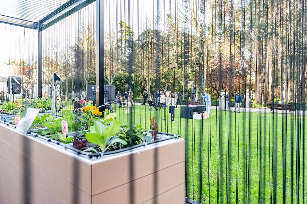 As hortas urbanas querem conquistar todos os lisboetas