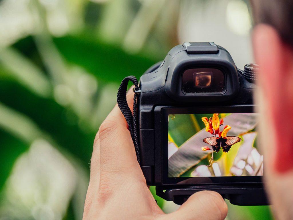 Dá um novo brilho às tuas fotografias com este curso online