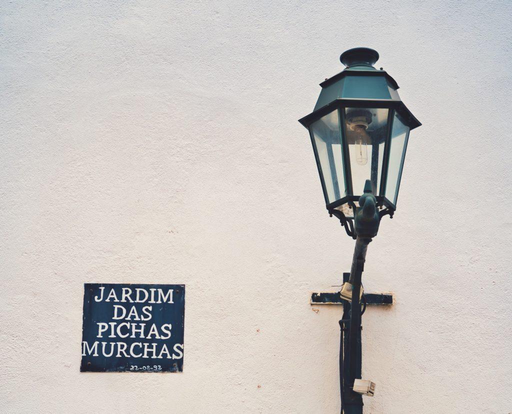 Sítios insólitos em Lisboa: o Jardim das Pichas Murchas