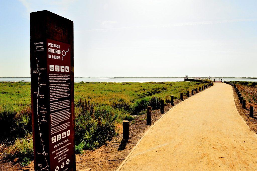 Passadiço junto ao Tejo vai unir Lisboa, Loures e Vila Franca de Xira