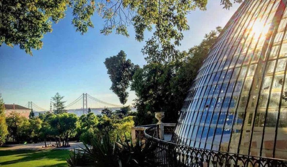 Parques e Jardins de Lisboa: Tapada das Necessidades, um espaço de interesse público