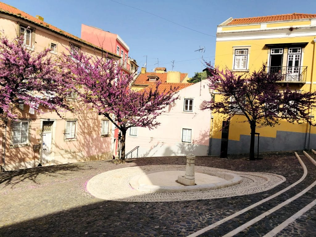 """10 """"refúgios"""" para relaxar no meio de Lisboa"""