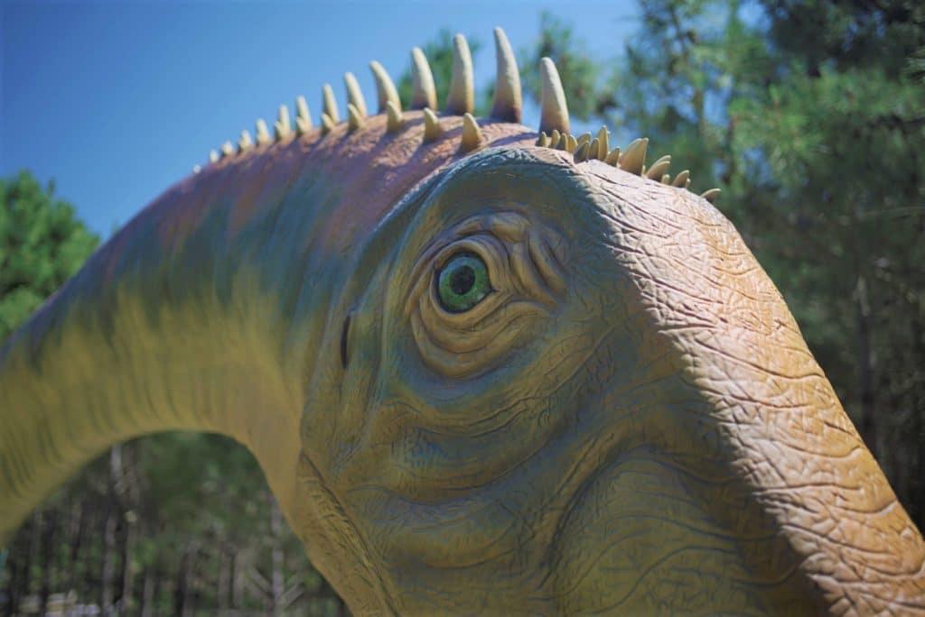 Dino Parque da Lourinhã vai receber o maior dinossauro do mundo