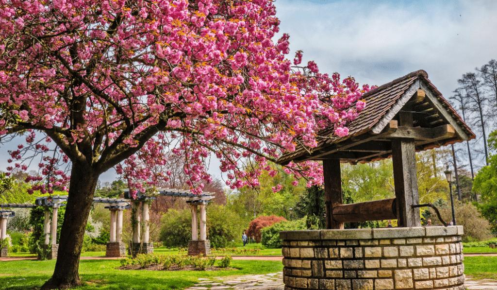 Les plus beaux parcs et jardins de Lyon