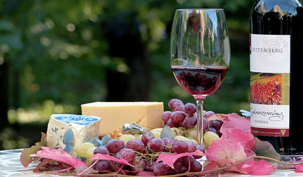 Partez déguster vins et fromages dans les domaines viticoles autour de Lyon !