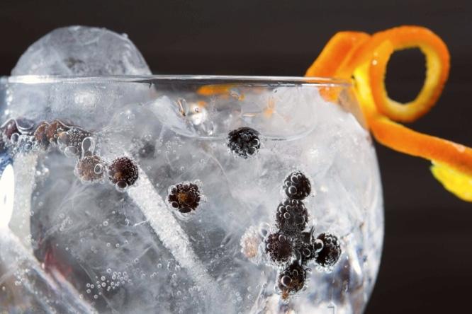 gin tonic carca 6-PORTADA