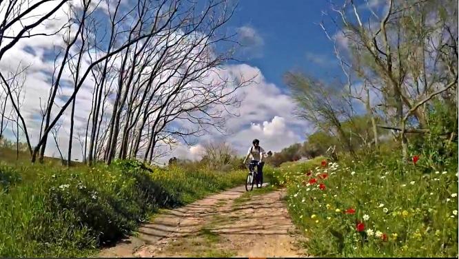 Mountain Cranks: rutas para descubrir El Pardo sobre ruedas