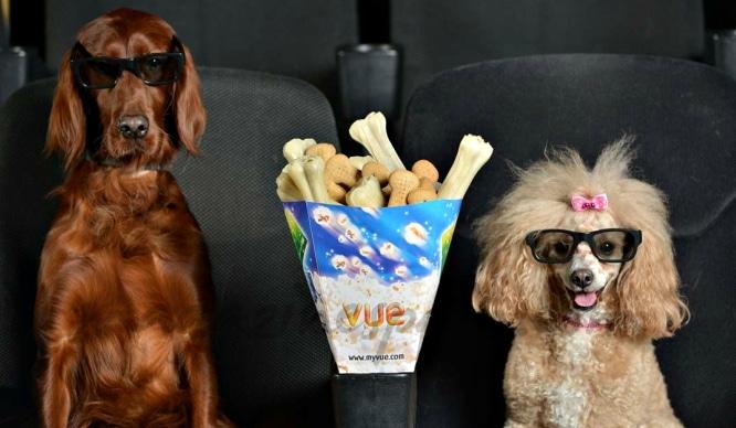 Los perros podrían entrar a las salas de cine madrileñas a partir de agosto