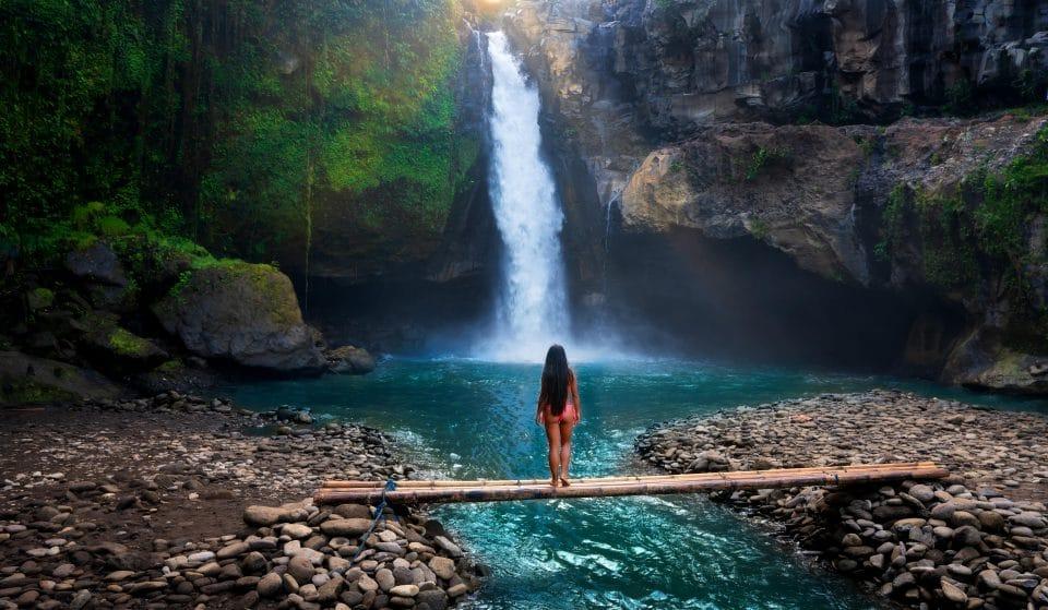 Corona Paradise: una experiencia para reconectar con la naturaleza