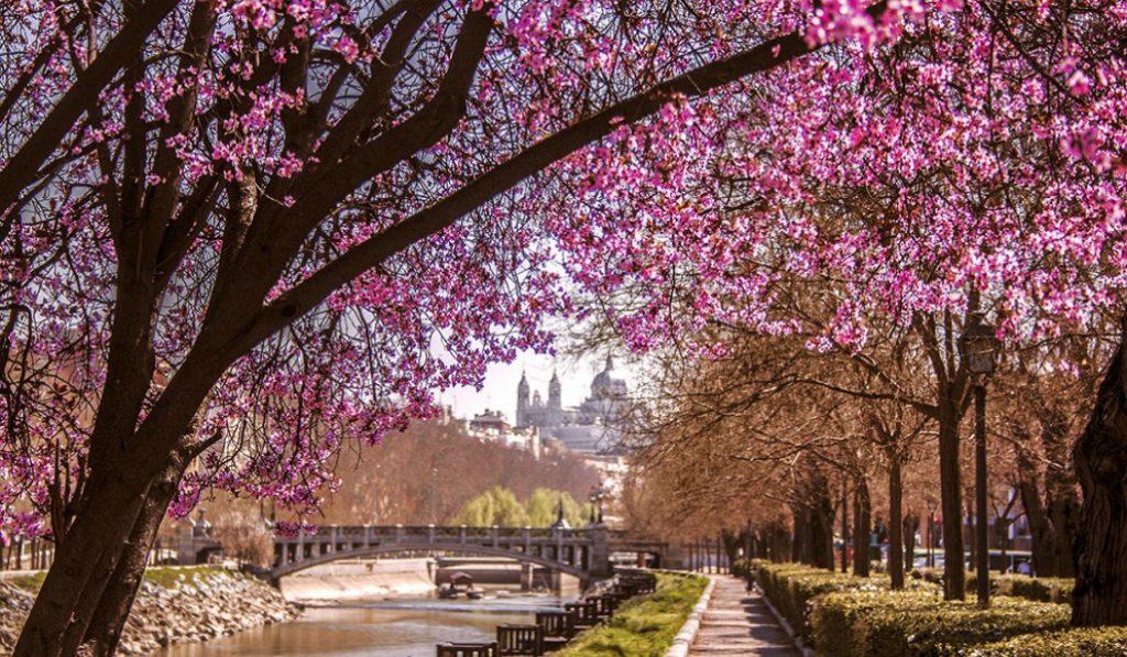 Primavera de la A a la Z en Madrid