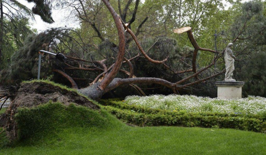 El parque de El Retiro, cerrado por el viento