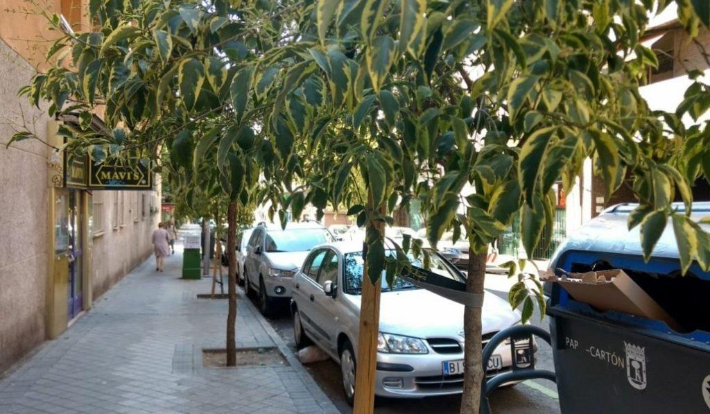 Chamberí será un distrito más verde en 2019