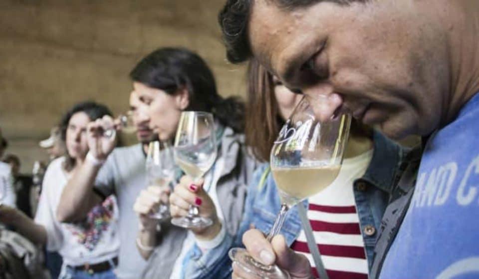 MalaUva: llega a Lavapiés la feria del vino sin aditivos