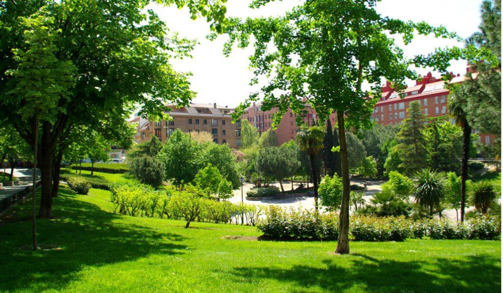 Un millón de árboles nuevos para la Comunidad de Madrid