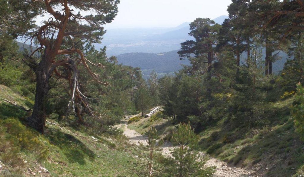 Esta nueva ruta del Camino de Santiago redescubre Madrid