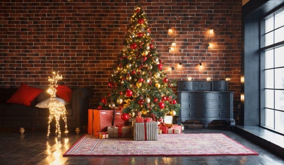 En estos viveros puedes darle una segunda vida a tu abeto navideño