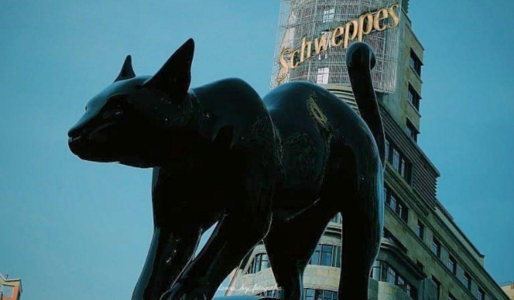 Un gato negro de tres metros ha aparecido en Callao por sorpresa