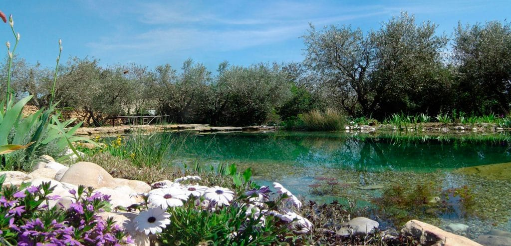 5 playas y piscinas naturales donde bañarse en Madrid