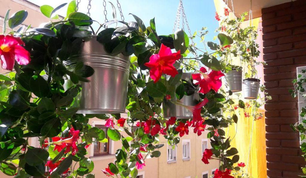 Tour por los balcones más bonitos del distrito Salamanca
