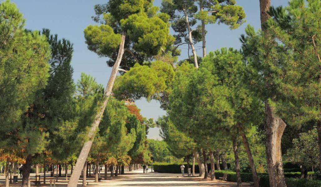 Madrid es la tercera ciudad más verde de España