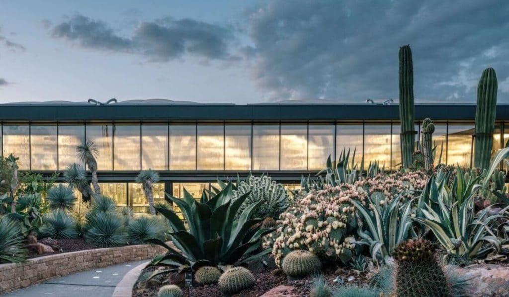 El mayor jardín de cactus de Europa, cerrado temporalmente