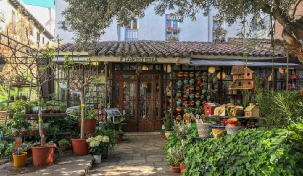Reabre El Jardín del Ángel, la floristería más antigua de Madrid