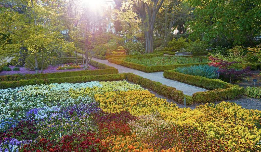 El Jardín Botánico reabre con todos los colores de la primavera