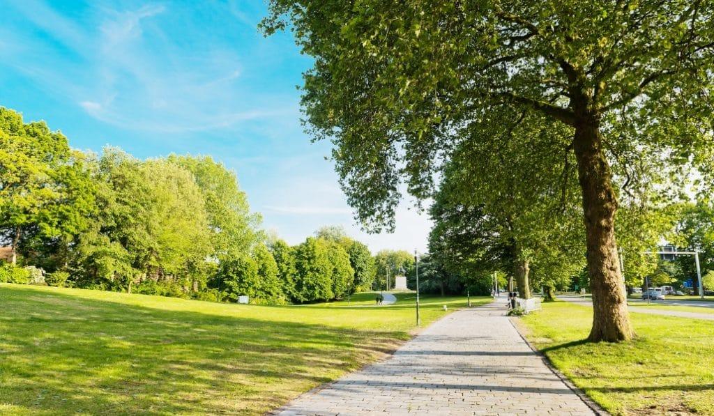 ¿Qué parques de Madrid han abierto hoy?