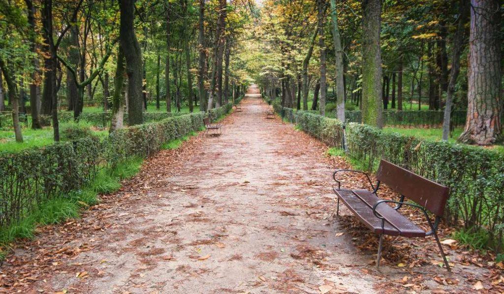 Madrid abrirá mañana los parques más pequeños y peatonalizará 29 calles