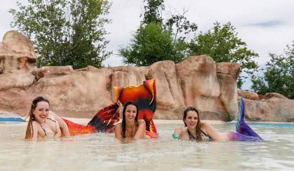 Aquópolis te enseña a nadar con cola de sirena o de tritón