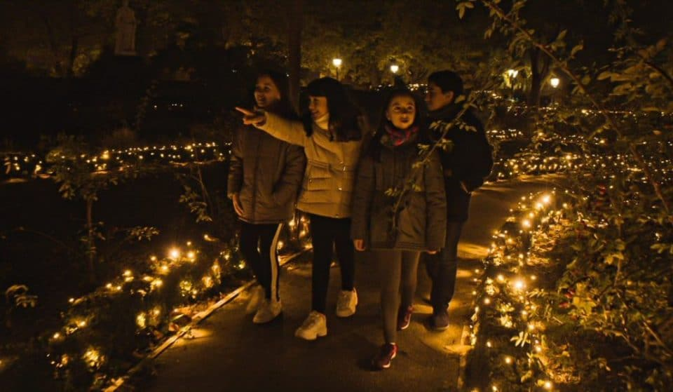 Regresa Naturaleza encendida: un espectáculo lumínico en el Real Jardín Botánico de Madrid