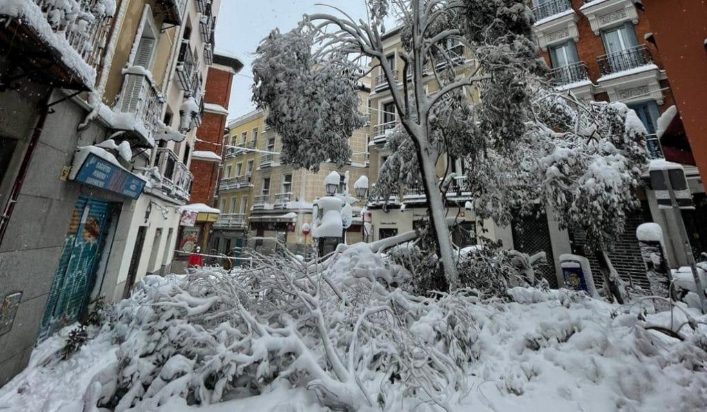 El Ayuntamiento podría declarar Madrid como zona catastrófica