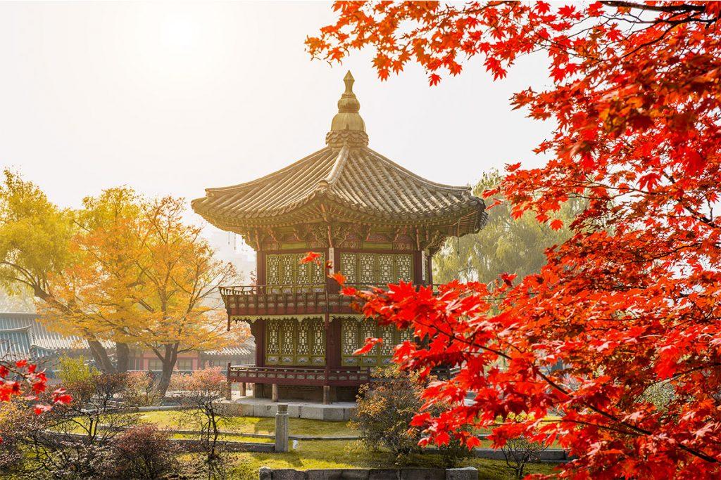 K-Week: experiencias para enamorarte (aún más) de Corea y convertirla en tu próximo destino