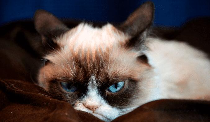 Los 10 Motivos Por Los Que Odiamos Los Lunes