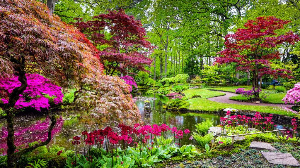 Bientôt un nouveau Jardin Japonais au cœur du Parc Longchamp ?