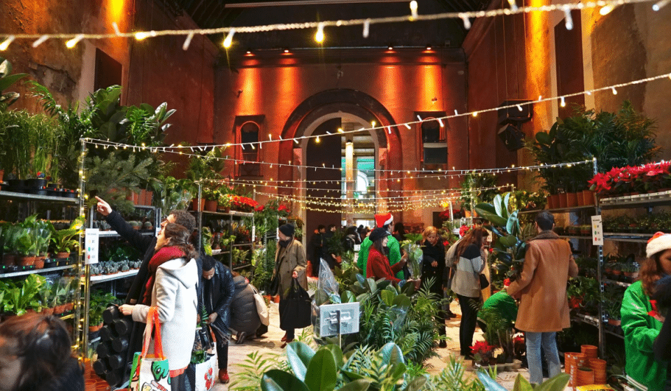 Grande Vente de Plantes à partir de 2€ ce weekend à Marseille !