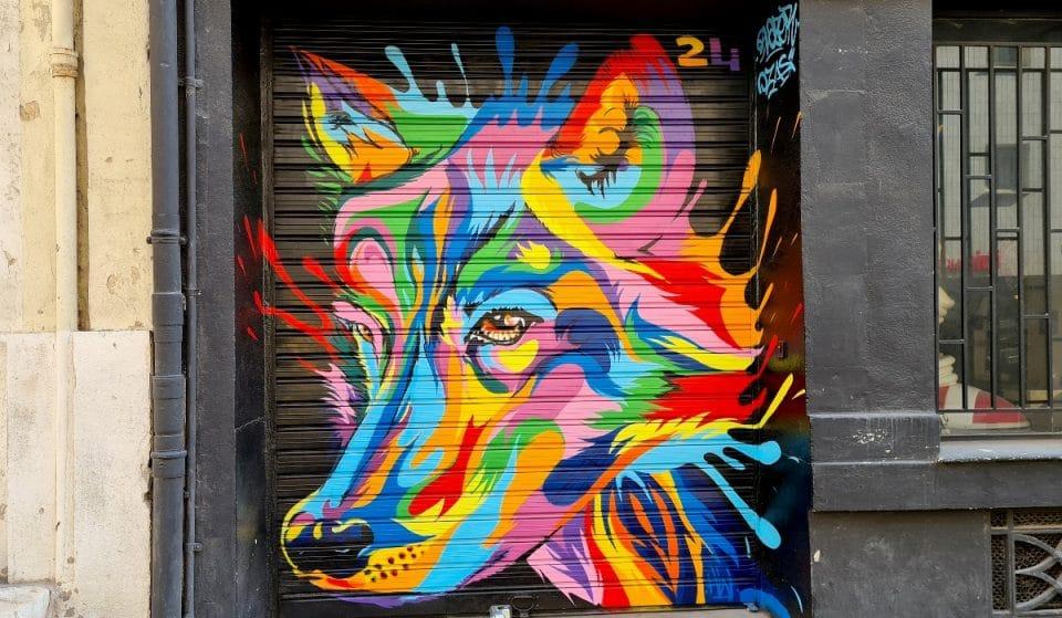 En images: les magnifiques fresques des rues Laffon et Fongate signées Ozas