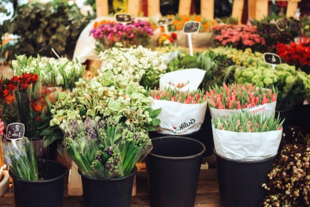 Marchés aux fleurs