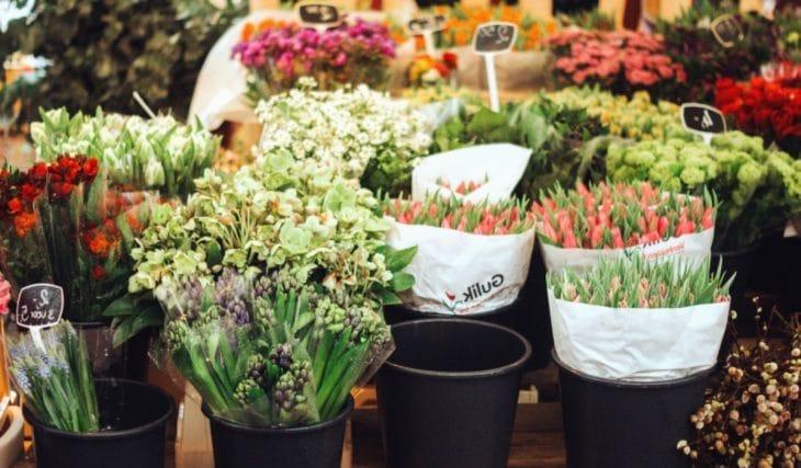 Les marchés aux fleurs les plus stylés de Marseille !