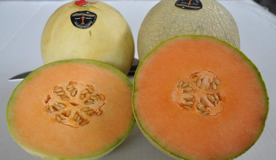 """I meloni """"d'oro"""" del Mantovano sbarcano a New York: 45 euro al chilo"""